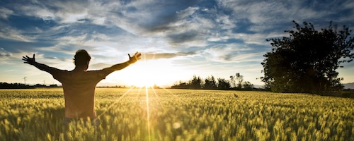 Man in field with sun